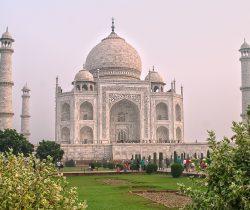Indie (74)