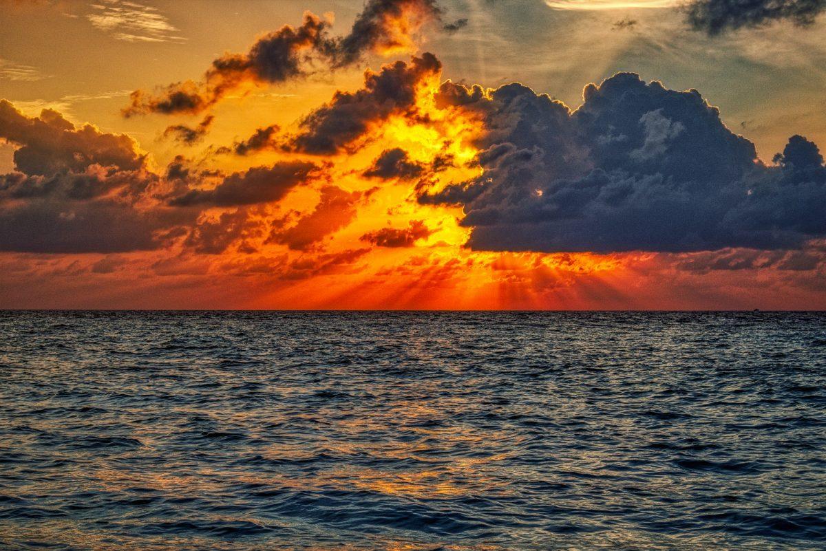 Maledivy (6)